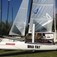 Vendo Hobie Cat Wild